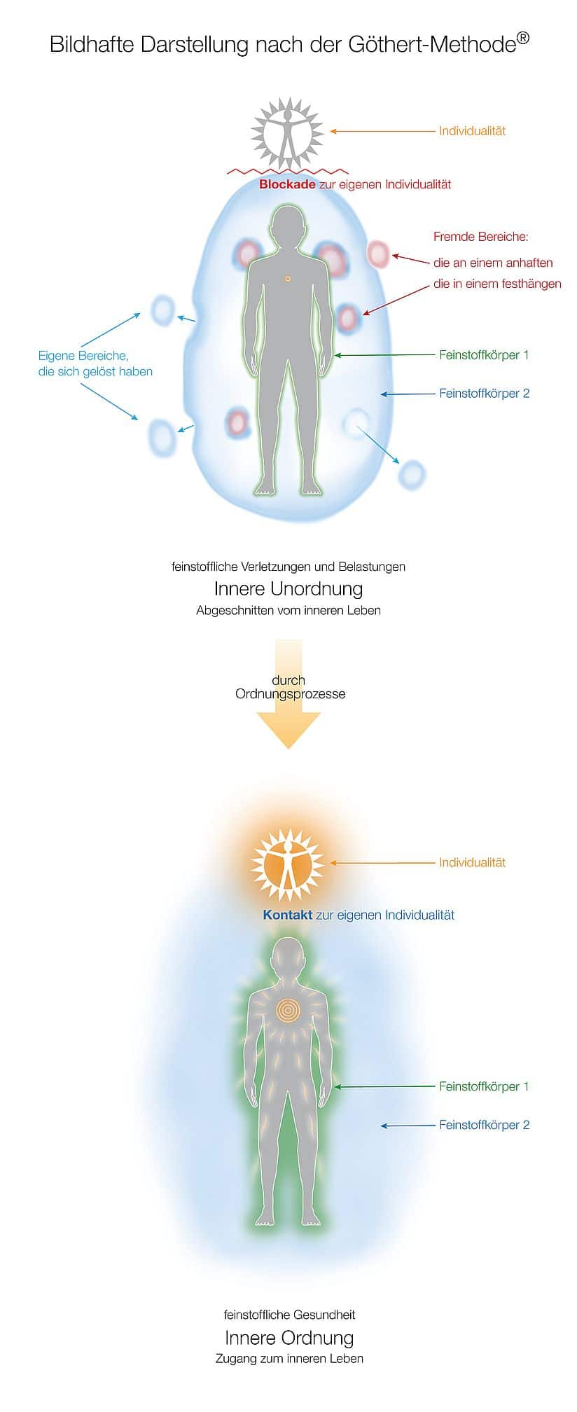 2. Was passiert in den Feinstoffkörpern, wenn sich die innere Unordnung durch Ordnungsprozesse in innere Ordnung verwandelt?